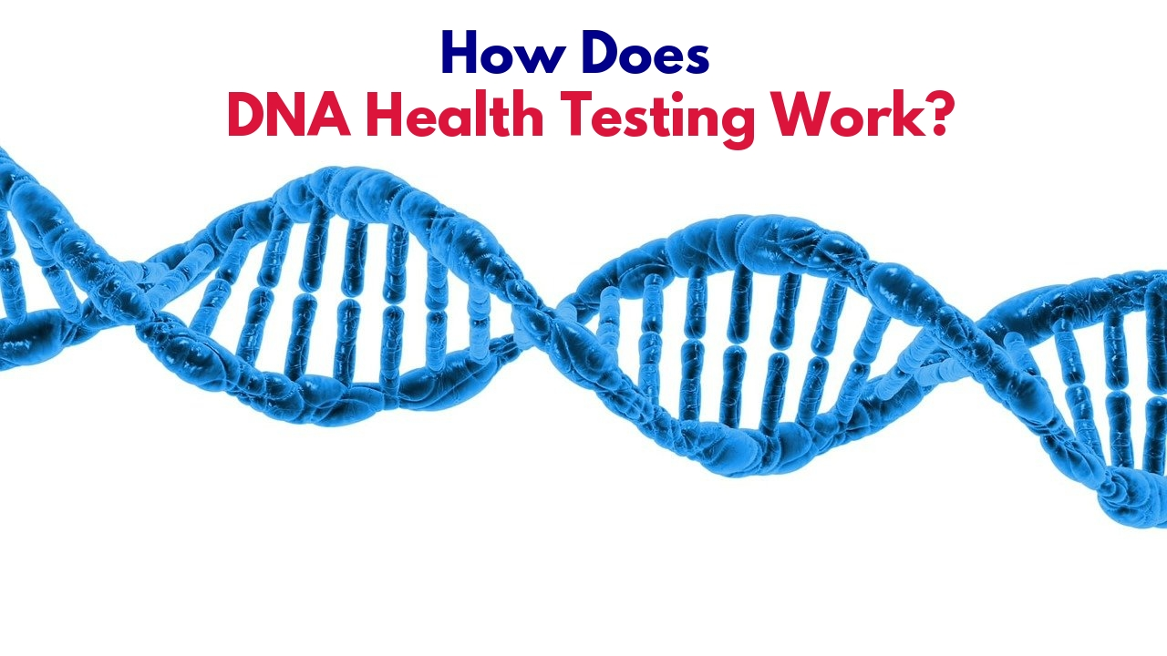 DNA strand for health testing